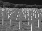 Galerie Neupre_Amerikanischer_Soldatenfriedhof_0004.jpg anzeigen.