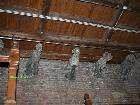Galerie Aachen_Innenstadt_Dom_29072009_3.jpg anzeigen.